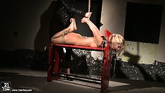 Blonde babe Nikky is in training for how to be a good slave by her mistress