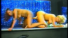 They are in for a treat at the strip club, two strippers fucking a dildo