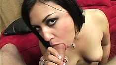 Chubby Latina holds onto her mighty curves while getting plowed