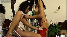 Fanny and Jennifer D stroke each other and finger some pussy