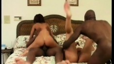 Two horny babes share the pleasure from one massive black cock