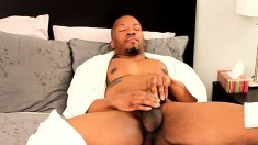 Sexy black stallion Kai Adams sends his hands pleasing his large dick