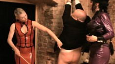 Mistress Carmen Has Help As She Tortures Some Dudes With An Audience