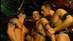 Three party studs taste each other's asses before enjoying rough anal sex