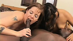Sex-starved white girls give into fucking a hung black stallion
