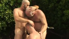 It's bear hunting season and these gays are outside blowing and ass fucking