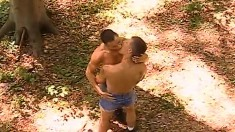 Gay group sex in the great outdoors with heavy ass banging and head