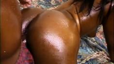Big Ass Ebony Babe Hardcore